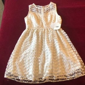 Altar'd State Vintage Cream Lace dress